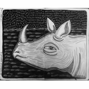 Nepali Rhino
